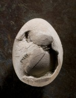 Fossil Bird Egg, Side B