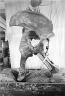 Articulating Diplodocus