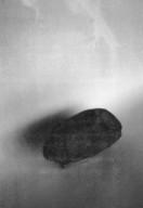 Experimental picture: Specimen