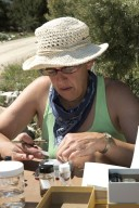 Collecting Solifugae with Dr. Paula Cushing