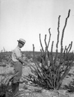 Man with Desert Plant
