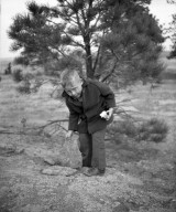 Boy in Front of Tree