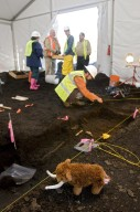 Snowmastodon Excavation Site