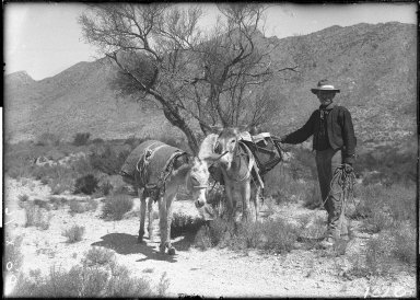 Prospector near Rock Canyon