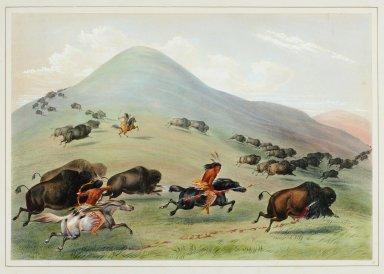 Buffalo Chase.