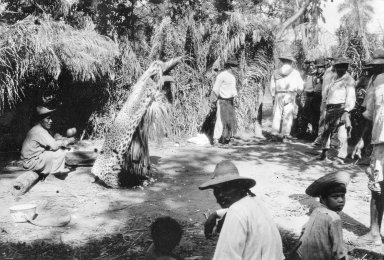 Scenes from the Tiger Dance of the Bororo Indians