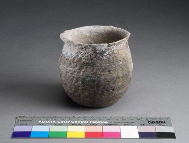 Ancestral Pueblo Clay Corrugated Necked Jar