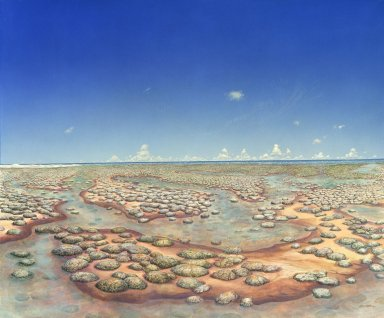 Ancient Denvers Paintings - Slimey Shoreline