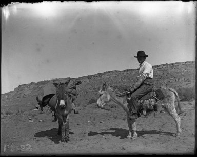 Bratley with 2 burros explore N. Arizona