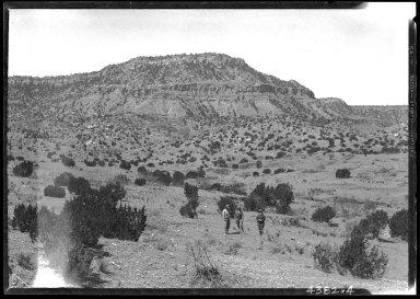 Mastodon fossil quarry