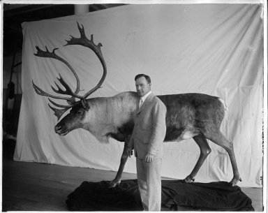 Albert Rogers with McGuire Caribou