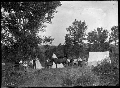 Camp in open woods