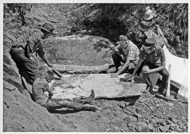 Excavation of Portheus