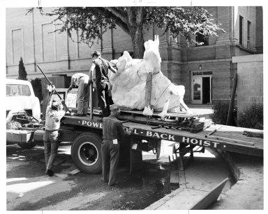 Unloading a Triceratops skull at DMNH