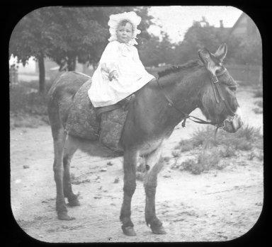 Baby on donkey