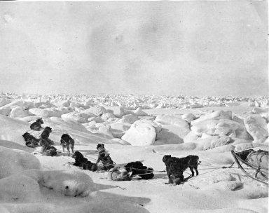 Rough ice near Cape Beaufort