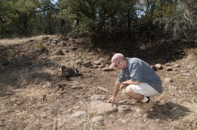 Dr. Steve Nash examines an object at the Sawmill site.