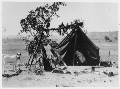 Camp scene: tent and ramada, meat drying