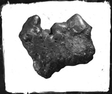 Specimen from Estherville, Iowa