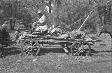 Specimen loaded on wagon for transport