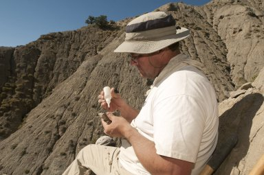 Dr. Kirk Johnson applies glue to stabilize a specimen found on the Kaiparowits Plateau.