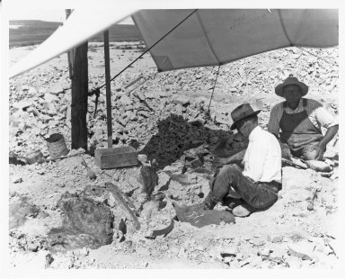 Figgins & Reinheimer Working on Fossils