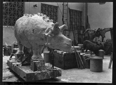 Mount being prepared for exhibit The Field Museum