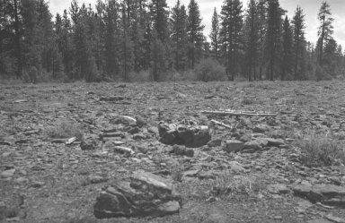 Meteorite in situ