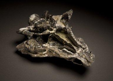 Gargoyleousaurus