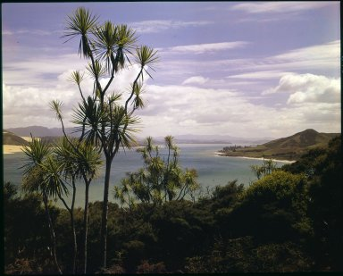 View over Omapere Bay, Hokianga Harbor