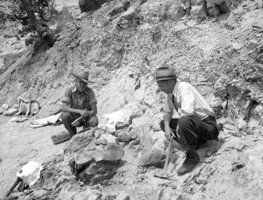 Excavation of Stegosaurus from Garden Park, Colorado