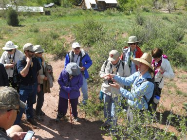 James Hagadorn leading a fieldtrip to Morrison, Colorado.