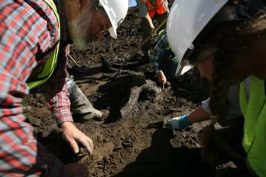Snowmastodon Excavation, People