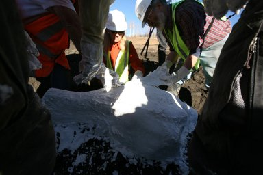Snowmastodon Excavation