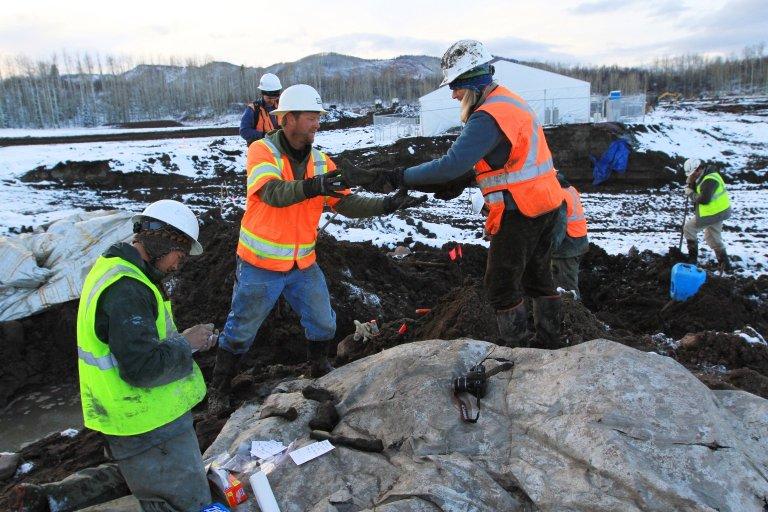 Snowmastodon Excavation Activity