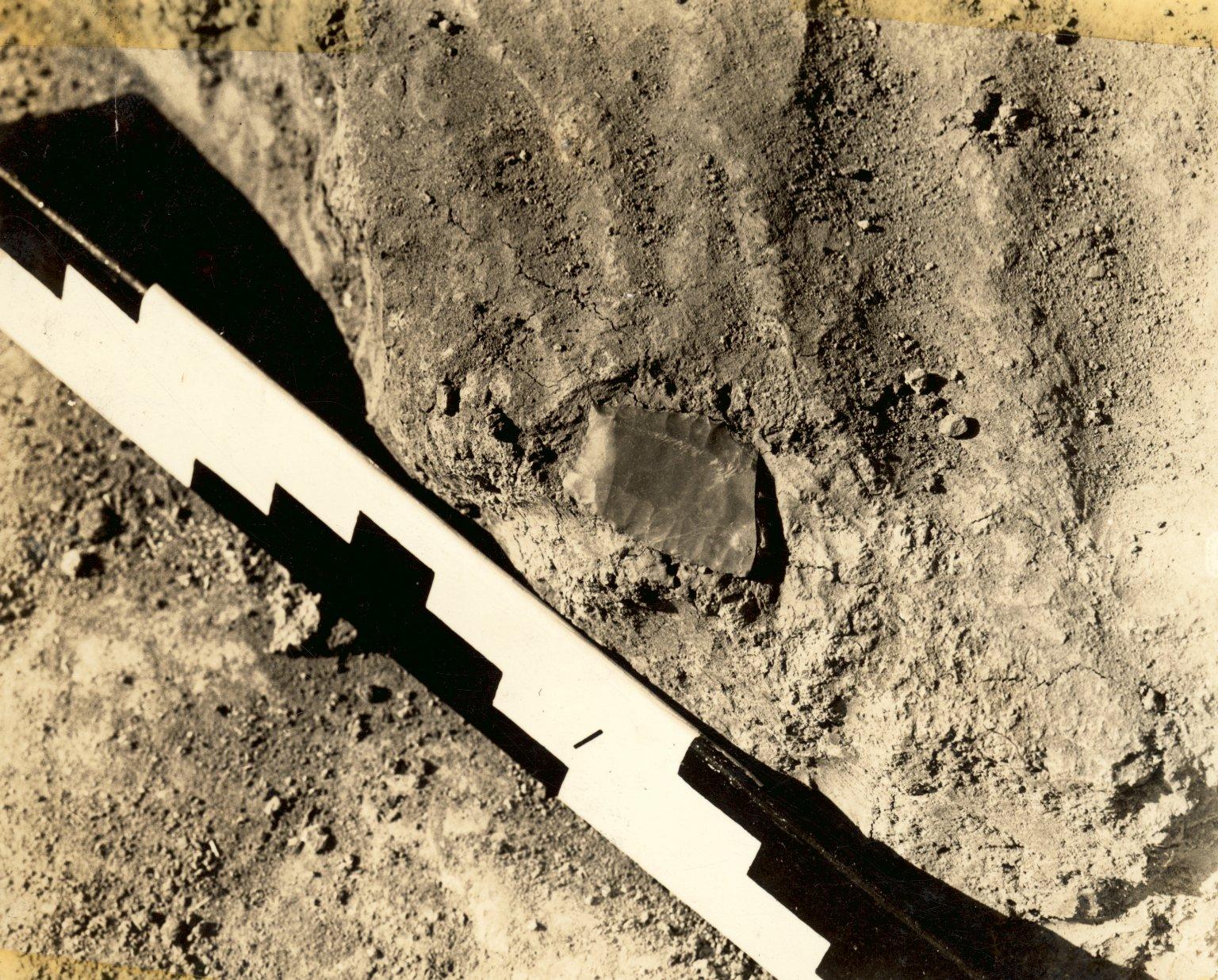 Folsom point fragment