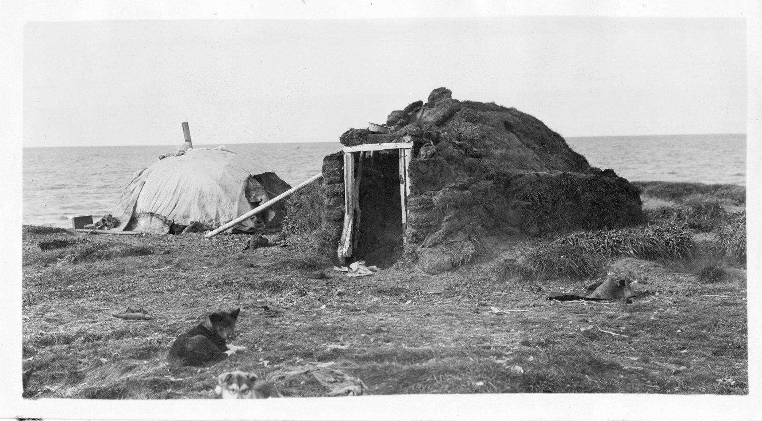 Native igloos
