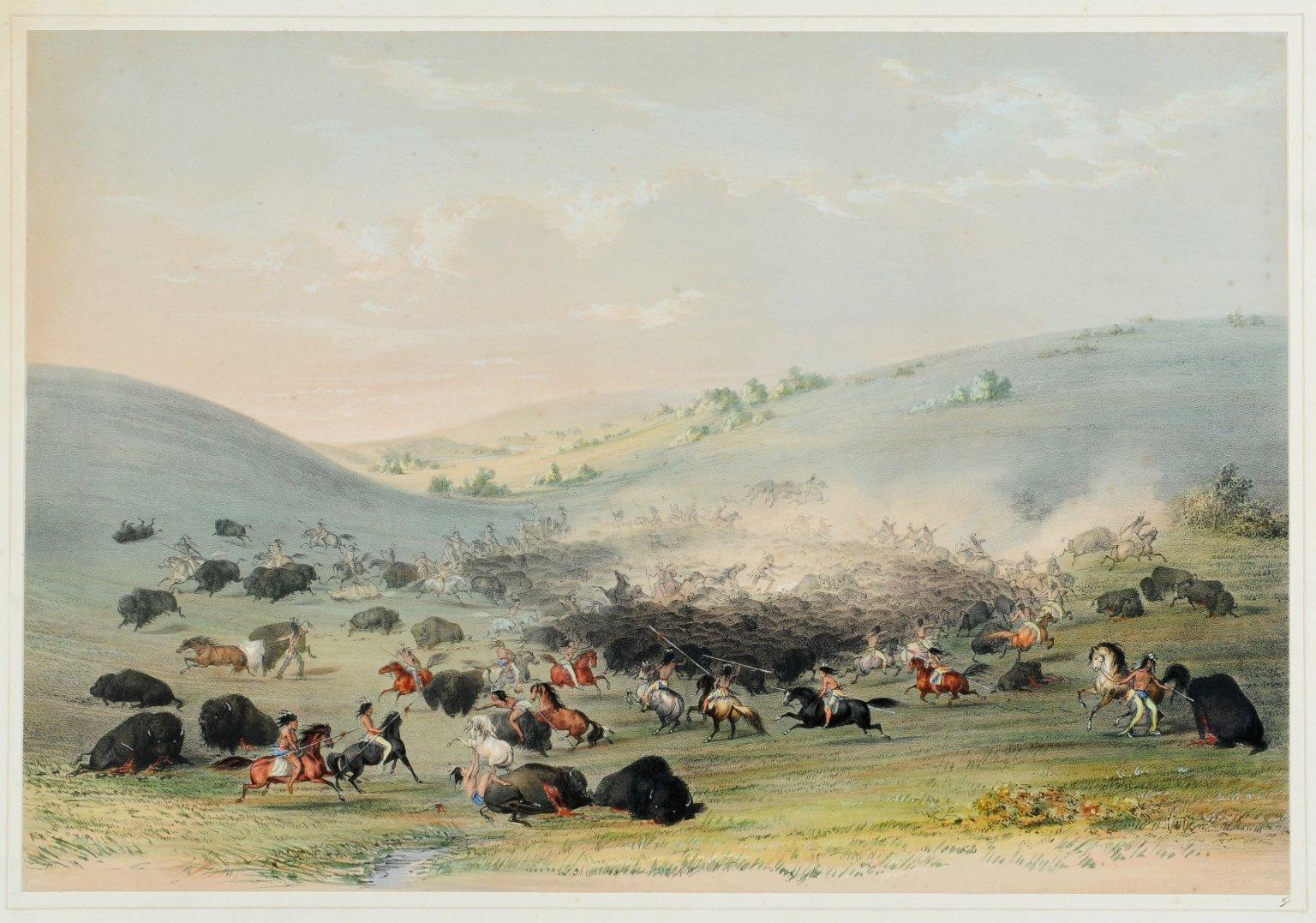 Buffalo Hunt. A surround.