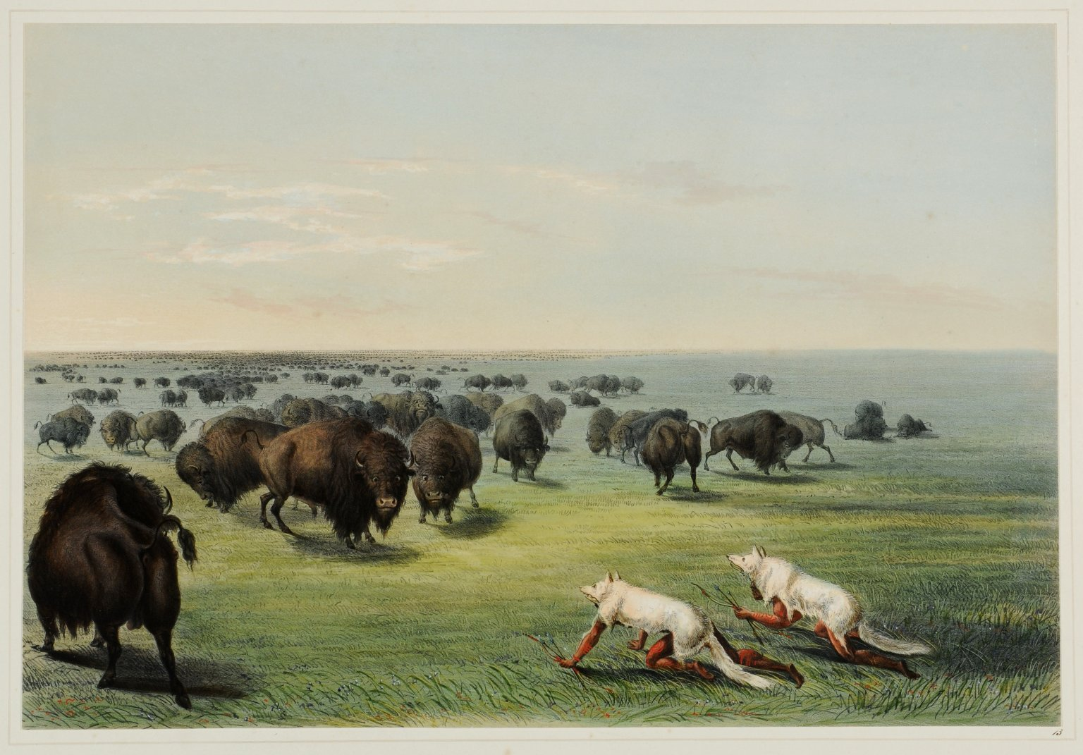 Buffalo Hunt. With Wolf Skin Mask.