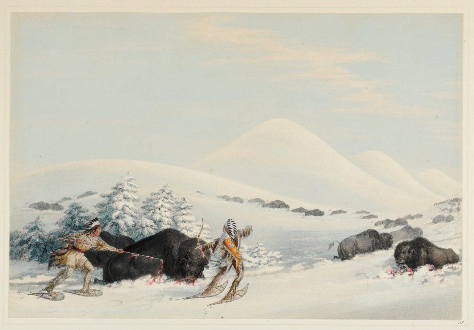 Buffalo Hunt, on Snow Shoes.