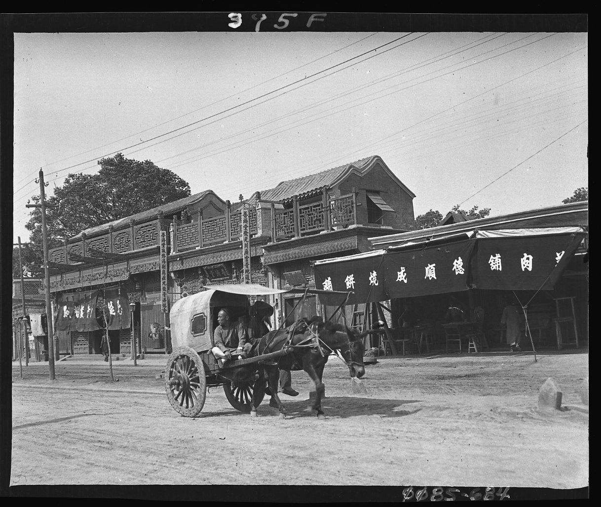 Covered Wagon Pulled by Mule