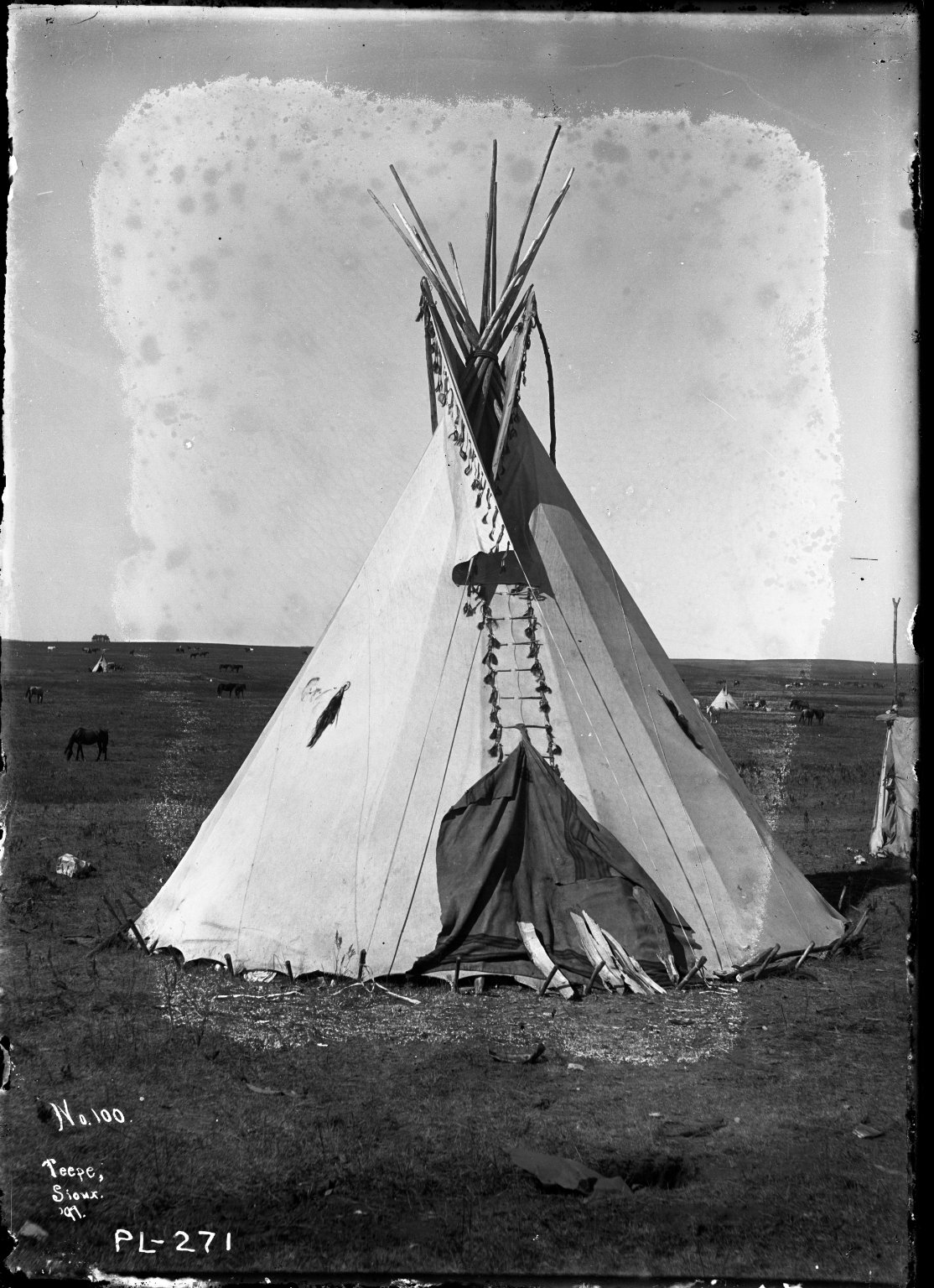 High Pipe's Tipi with scalp locks