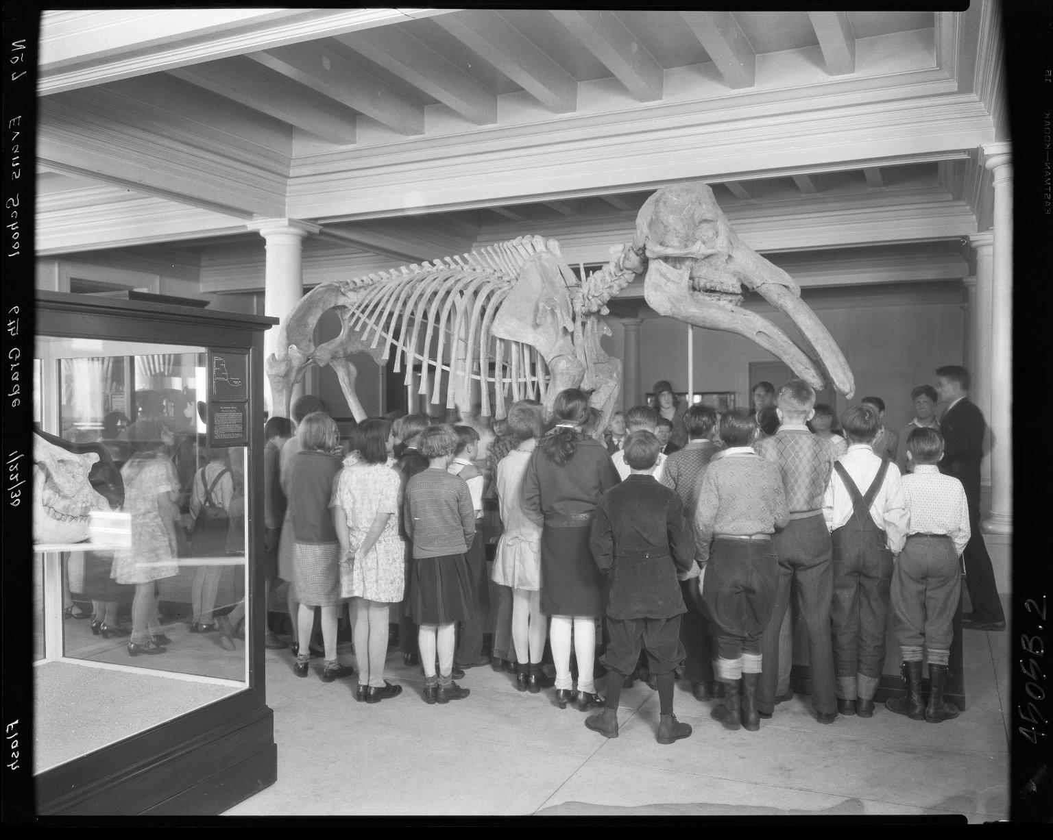 6th Grade Class from Evans Elementary at Long Jawed Mastodon
