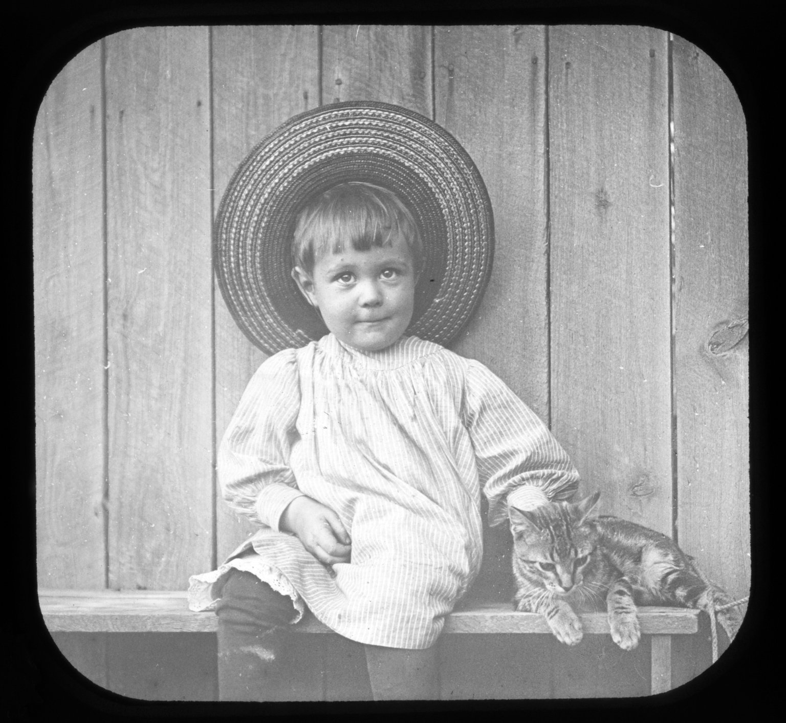 Toddler with cat