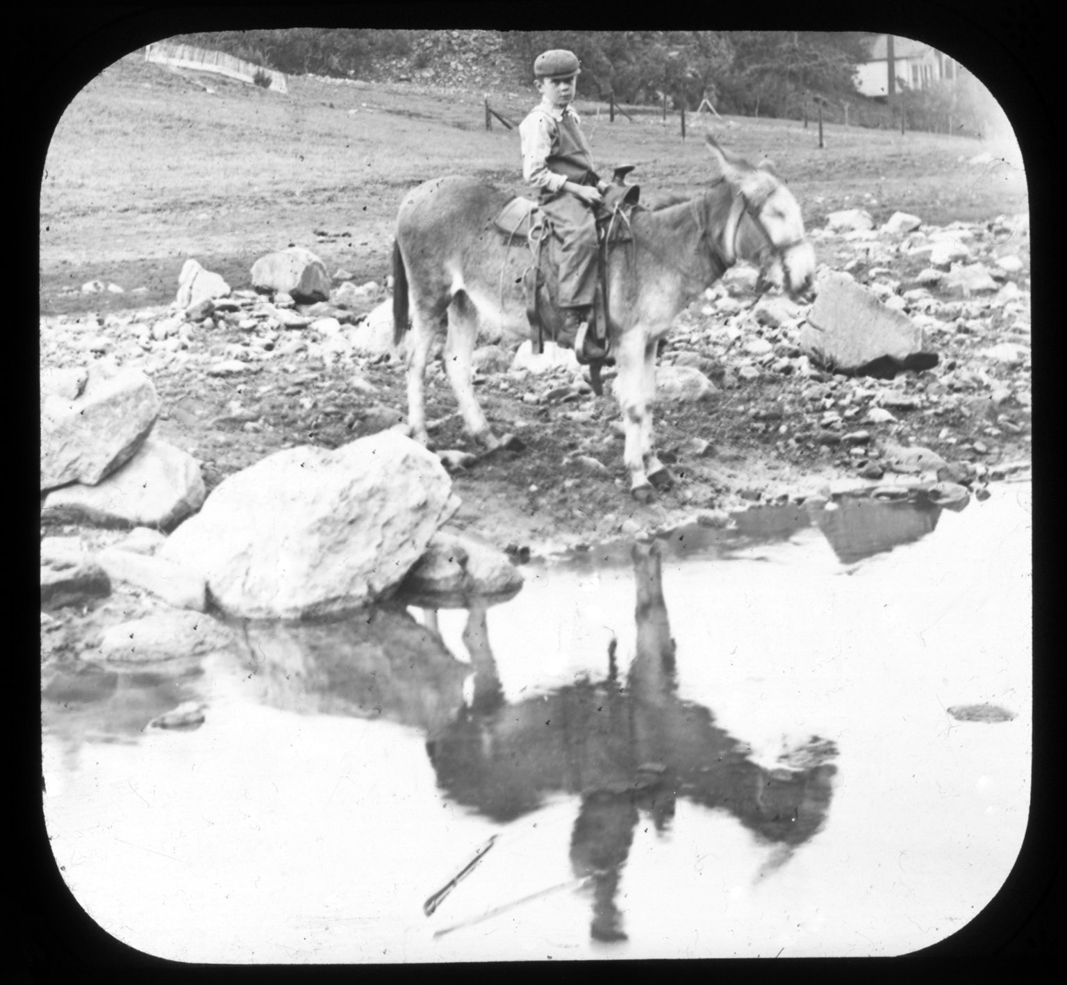 Young boy on donkey
