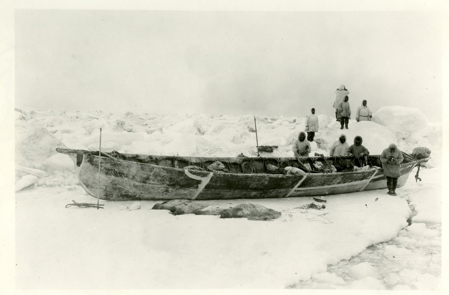 Crew of oomiak on ice with ringed & spotted seals