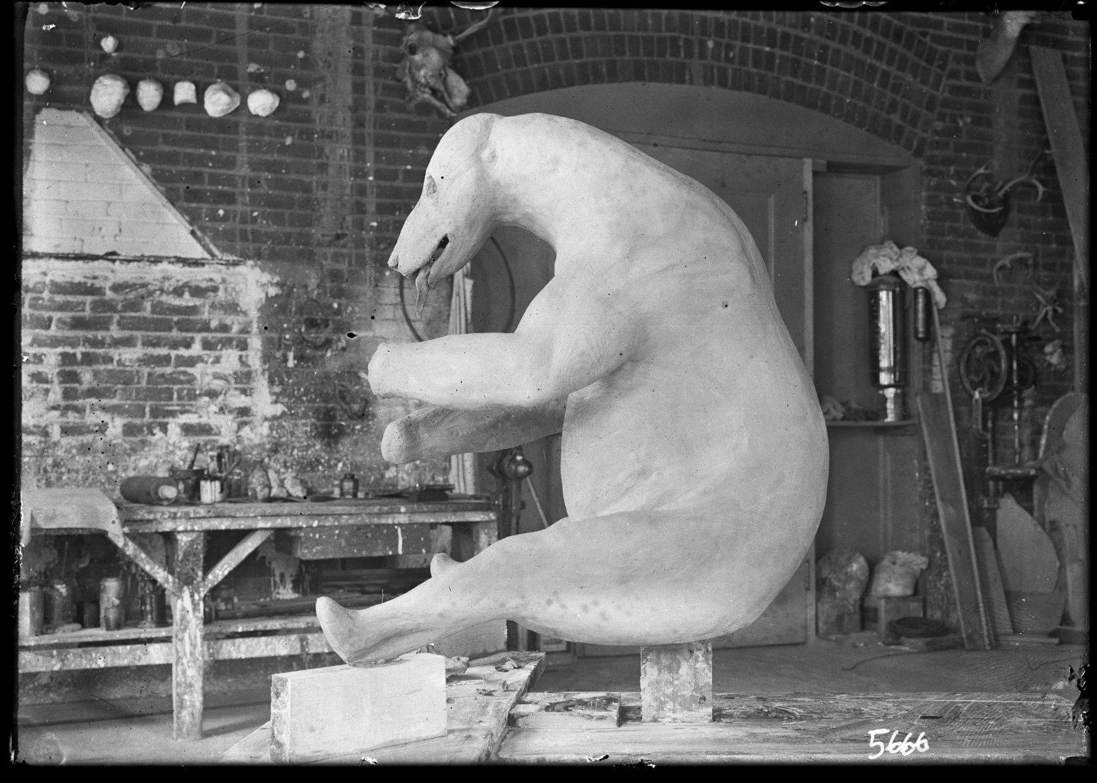 Kodiak bear manikin in taxidermy lab