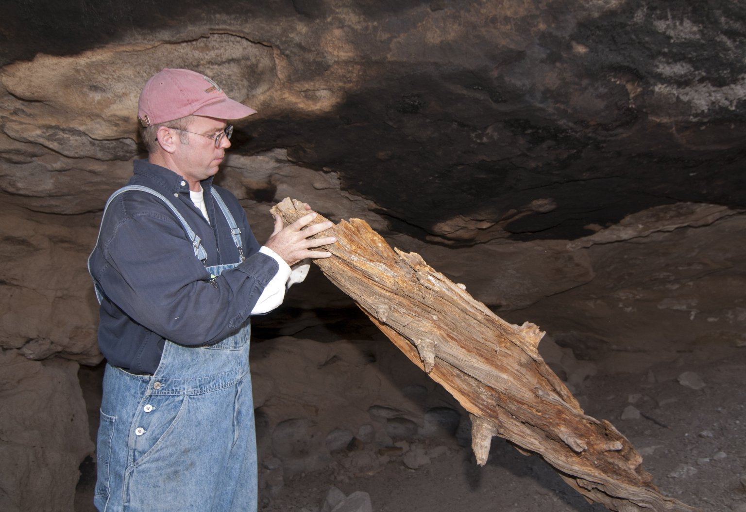 Dr. Steve Nash examines a timber at the Hinkle Park Cliff Dwelling.