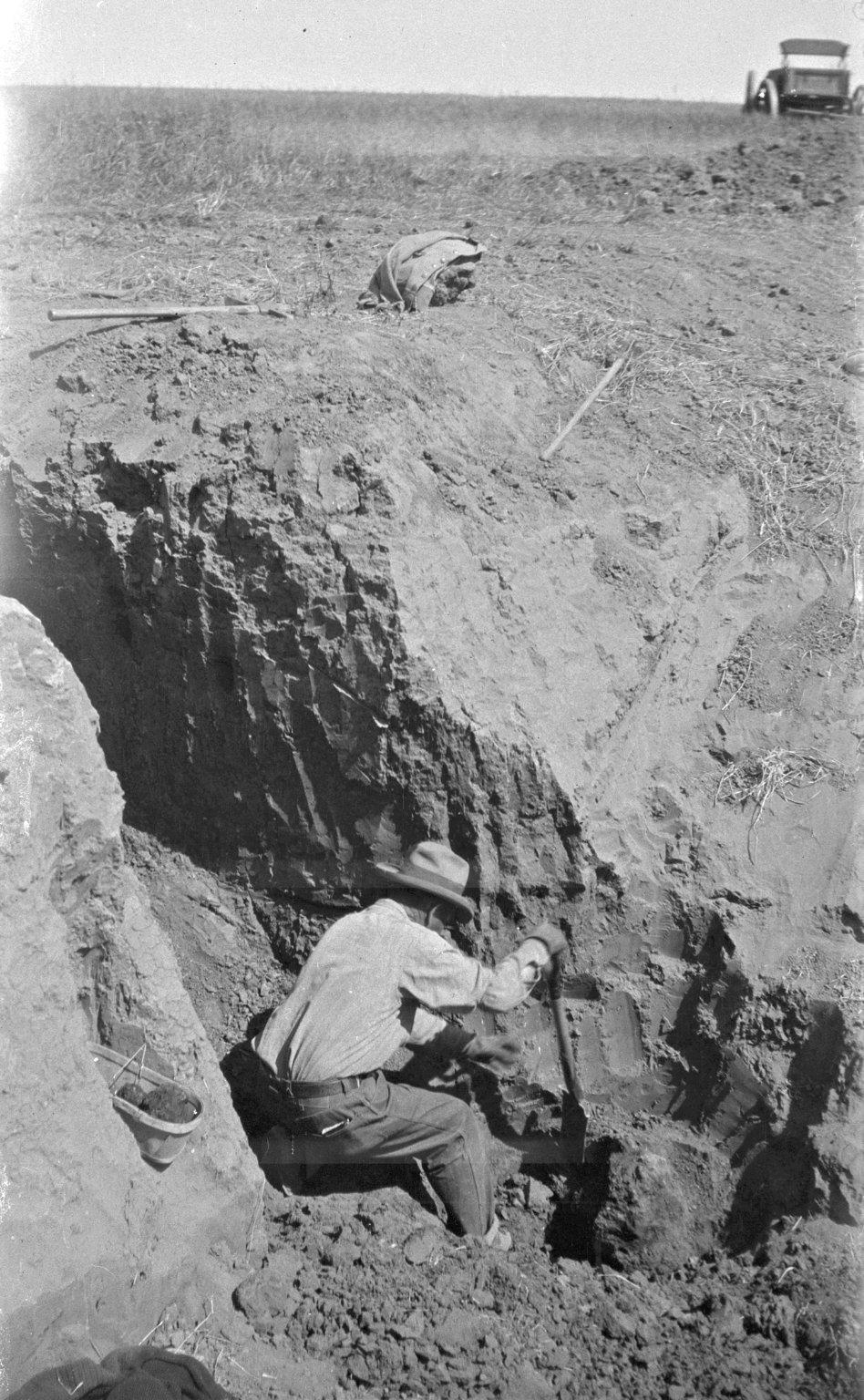 Excavating large specimen