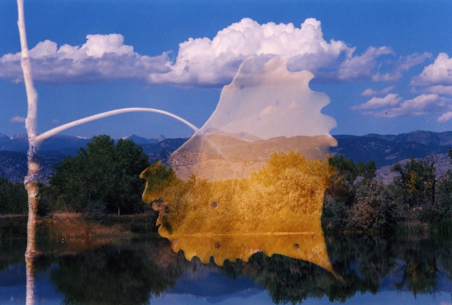 Double Exposure - Large leaf over scene with pond and mounatins